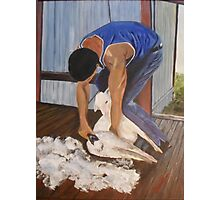 Shearing at Bookham, NSW Photographic Print
