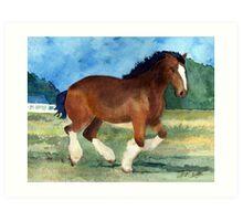 Clydesdale Horse Portrait Art Print