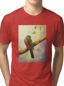 King Parrot,  Killarney country Qld Australia. Tri-blend T-Shirt
