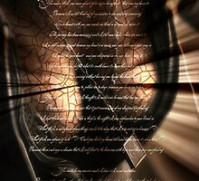 The cracks in my skin let your light in  by S .