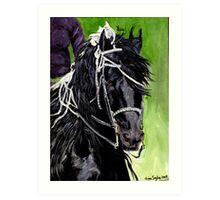 Freisian Horse Portrait Art Print