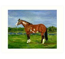 Paint Halter Horse Portrait Art Print
