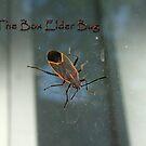 Elder One by EbelArt