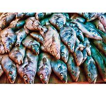 Blue Fish Photographic Print