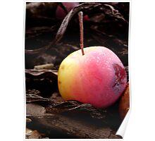 Crete Fruit Poster