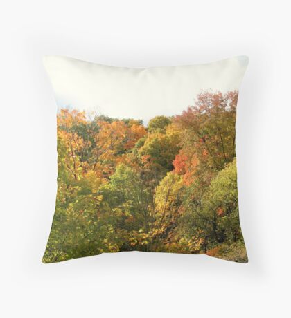A Jackson Pollock Autumn Throw Pillow