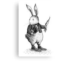 Rabbit - Boy Canvas Print