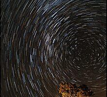 Star trails by nealbrey
