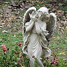 Angel in the Garden by angelandspot