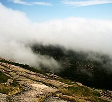 Cadillac Mountain  by Jonathan Eggers