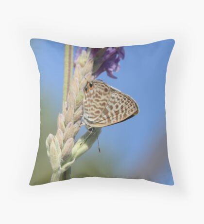 Long-Tailed Blue Butterfly on Lavender Throw Pillow