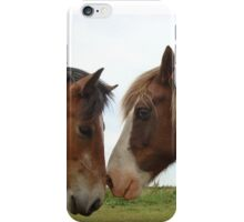 Love thy  NEIGH....bour iPhone Case/Skin