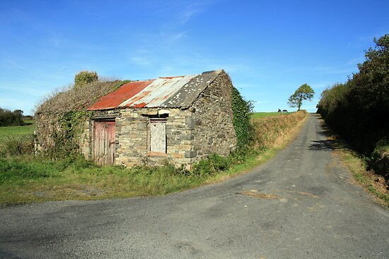 Old Rural cottage by John Quinn