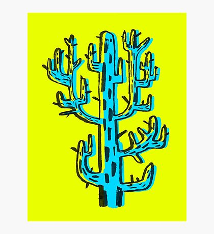 Cactus azul Photographic Print