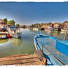Potamas Estuary Cyprus by Kelvin Hughes