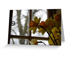 Gazing Greeting Card