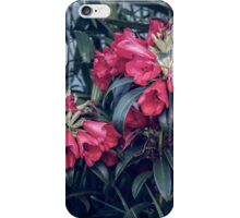 Wow What Are Those Flowers? iPhone Case/Skin