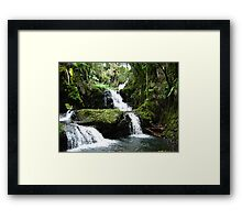 Tropical Waterfall Framed Print