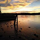 Sunset Upon the Ducks by Terri-Leigh Stockdale