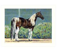 American Saddlebred Horse Portrait Art Print