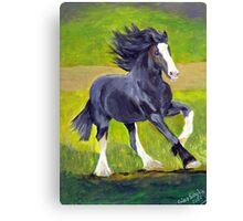 Shire Draft Horse Portrait Canvas Print