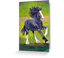 Shire Draft Horse Portrait Greeting Card