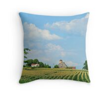 Landscape: York Region farmstead Throw Pillow