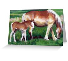 Belgian Mare and Foal Horse Portrait Greeting Card
