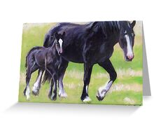 Clydesdale Mare and Foal Horse Portrait Greeting Card