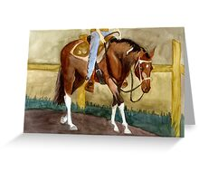 Beginning Lessons Paint Western Pleasure Horse Portrait Greeting Card