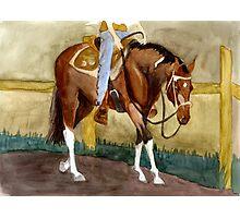 Beginning Lessons Paint Western Pleasure Horse Portrait Photographic Print