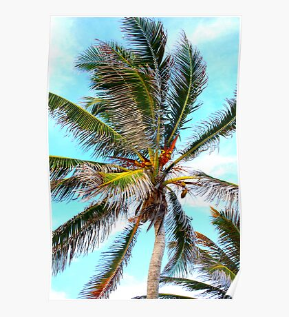 coconut au naturell Poster