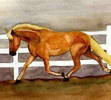 Haflinger Horse Portrait by Oldetimemercan