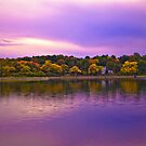 Brookline Reservoir park 2 by LudaNayvelt