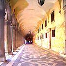 The Doge's Palace, Venice by Christiane  Kingsley