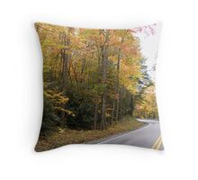 Colorful Roadway Throw Pillow