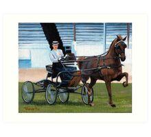 Hackney Horse Portrait Art Print