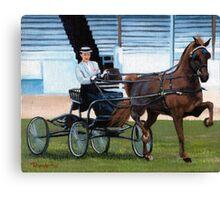 Hackney Horse Portrait Canvas Print