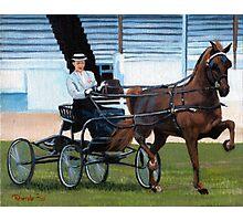 Hackney Horse Portrait Photographic Print