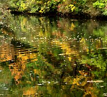 In Monet's footsteps by Marusia917