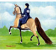Ladies Pleasure American Saddlebred Horse Portrait Photographic Print