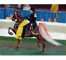 The Winning Pass American Saddlebred Horse Portrait  Photographic Print