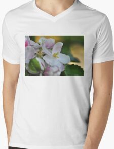 Apple blossom time Mens V-Neck T-Shirt