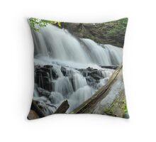 Mohwak Falls -  Ricketts Glen  Throw Pillow