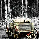 Uncovered Wagon II by Al Bourassa