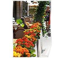 New York Fall Flowers Poster