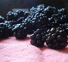 Blackberry Harvest by ReveLinWonder