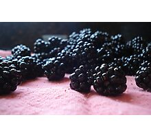 Blackberry Harvest Photographic Print