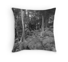 Life of Survival.... Throw Pillow