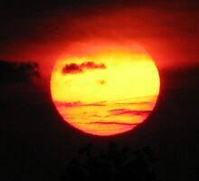 Pseudo-Tropical New Hampshire Sunset by LeeHicksPhotos